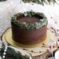 Best Peppermint Mocha Christmas Cake Singapore