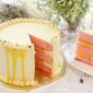 Mango Lychee Cake Singapore